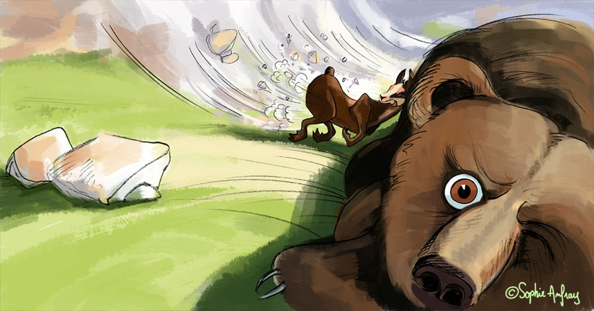 Petit isard se cogne contre un énorme ours.