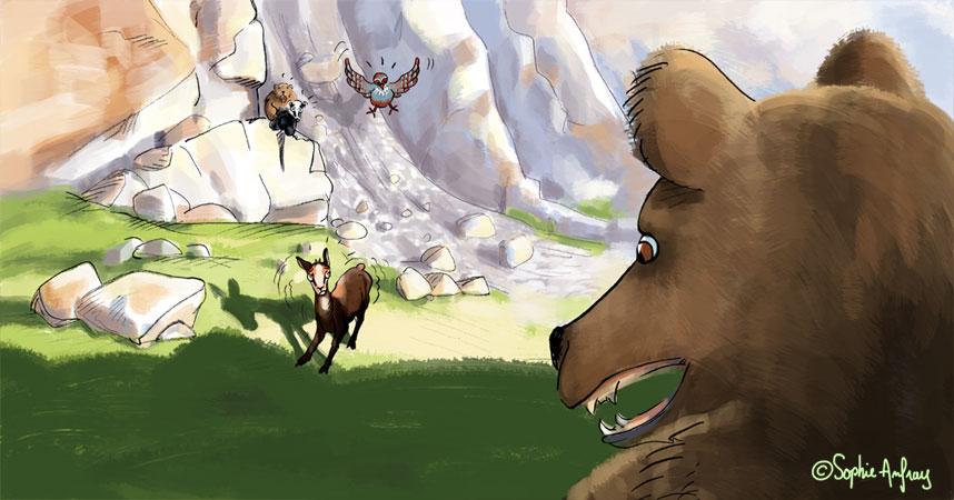Petit isard qui tremble devant un gros ours.