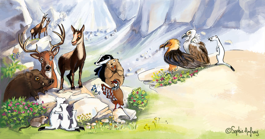 Petit isard entouré d'animaux.