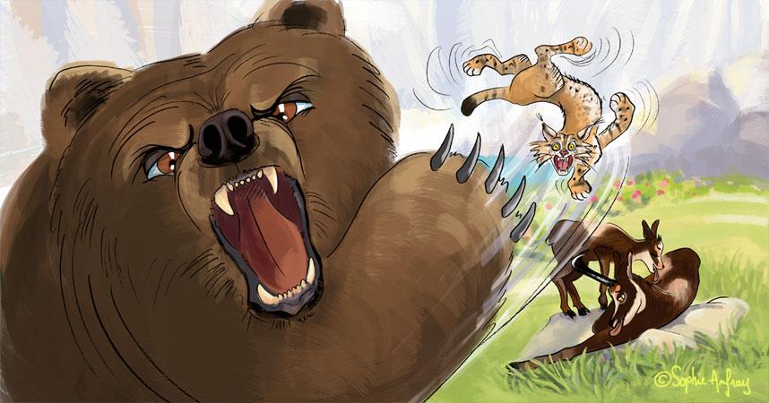 Un ours énorme donne une grosse baffe à un lynx.