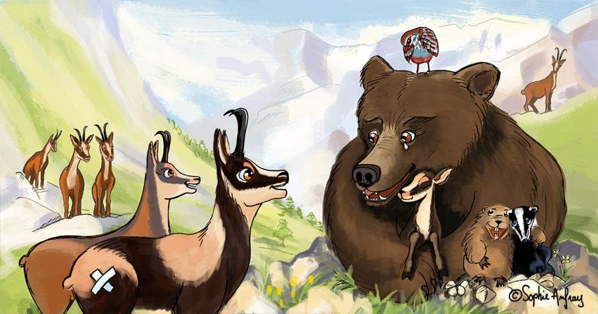 Groupe d'isards à coté d'un ours.