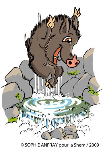Dessin humoristique d'un sanglier qui fait du canyoning et saute dans l'eau.