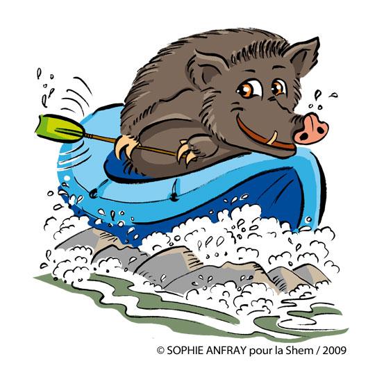Dessin humoristique d'un sanglier dans un canoé de rafting.