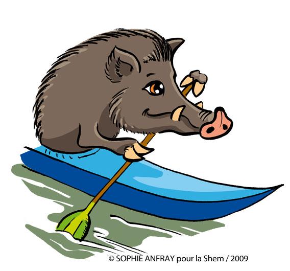 Dessin humoristique d'un sanglier qui fait du canoé.