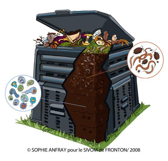 Illustration d'un composteur avec zoom sur petites bêtes qui l'habitent.