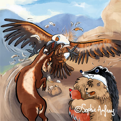 Un isard combat un vautour.