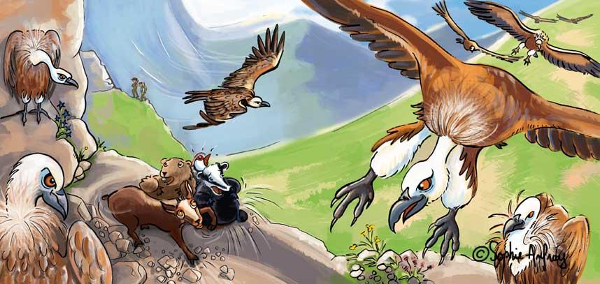 Vol de vautours.