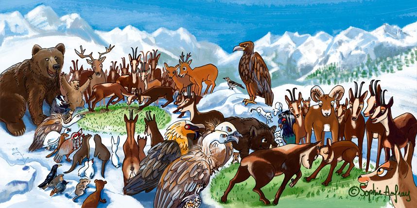 Scène du grand tournoi avec tous les animaux réunis.