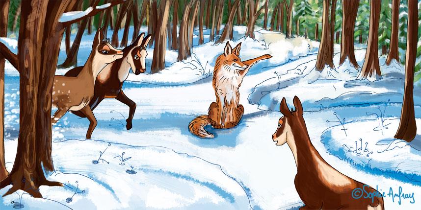 Un renard dans la forêt.