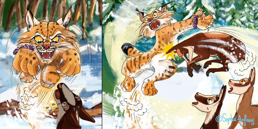 Combat entre un lynx et un isard.