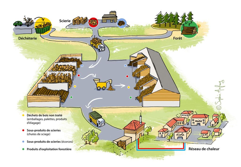 Shéma de la valorisation des déchets bois en énergie.