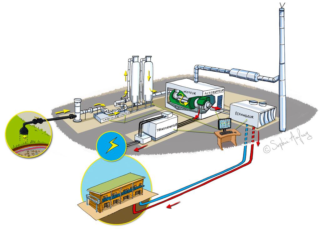 Shéma de fonctionnement de la cogénération à partir de biogaz issu de la biomasse.