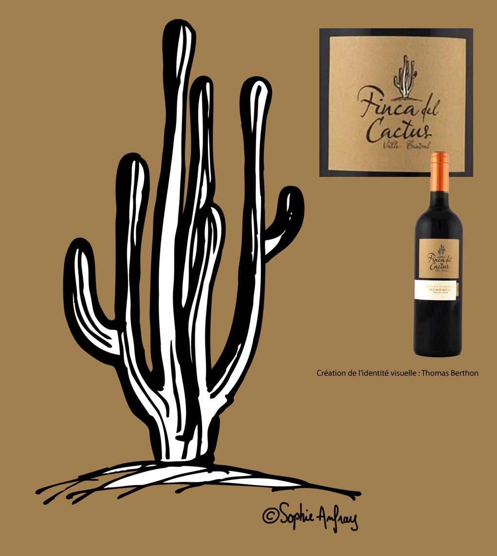 Dessin d'un cactus pour une étiquette de vin.