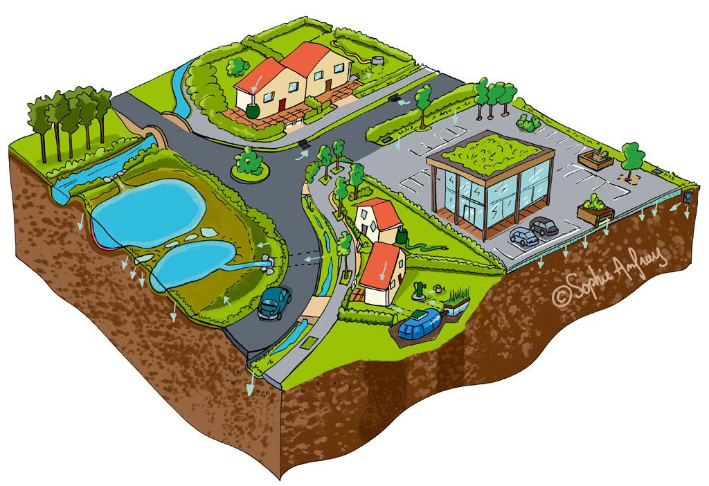 Représentation d'une ville modèle en matière de gestion des eaux pluviales.