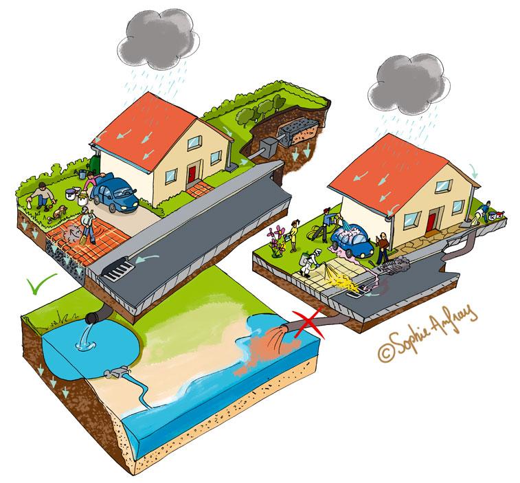 Représentation des bonnes et mauvaises pratiques en matière de gestion des eaux pluviales.