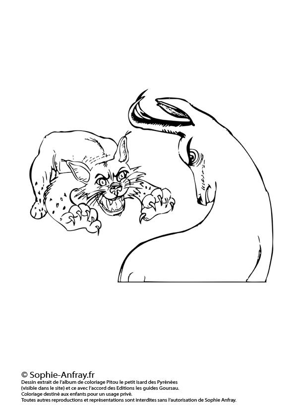 Coloriage pour enfant - Le lynx et l'isard