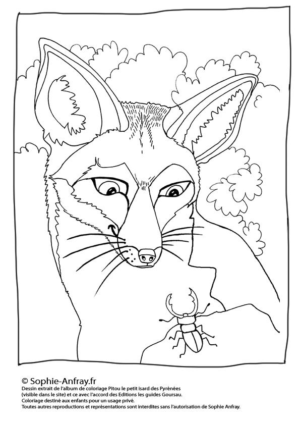 Coloriage pour enfant - Le renard et le lucane