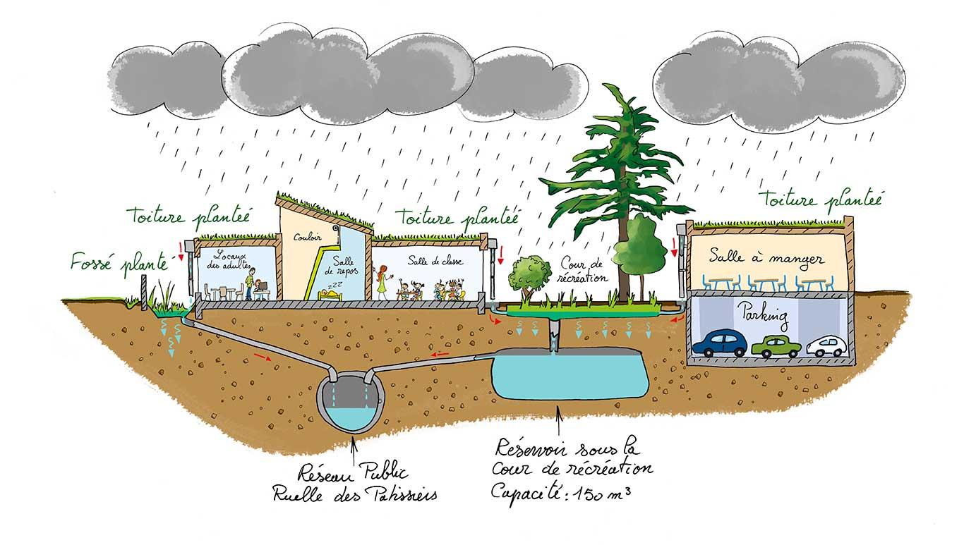 ecole-louis-jouvet-gestion-eaux-pluviales-sophie-anfray